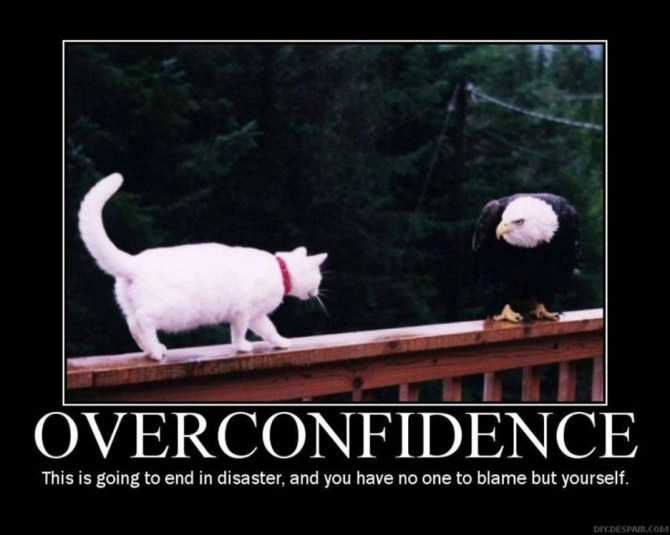 funny-inspirational-quote-about-overconfidence-and-the-picture-of-the-cat-humorous-quotes-about-life-just-for-you-936x748