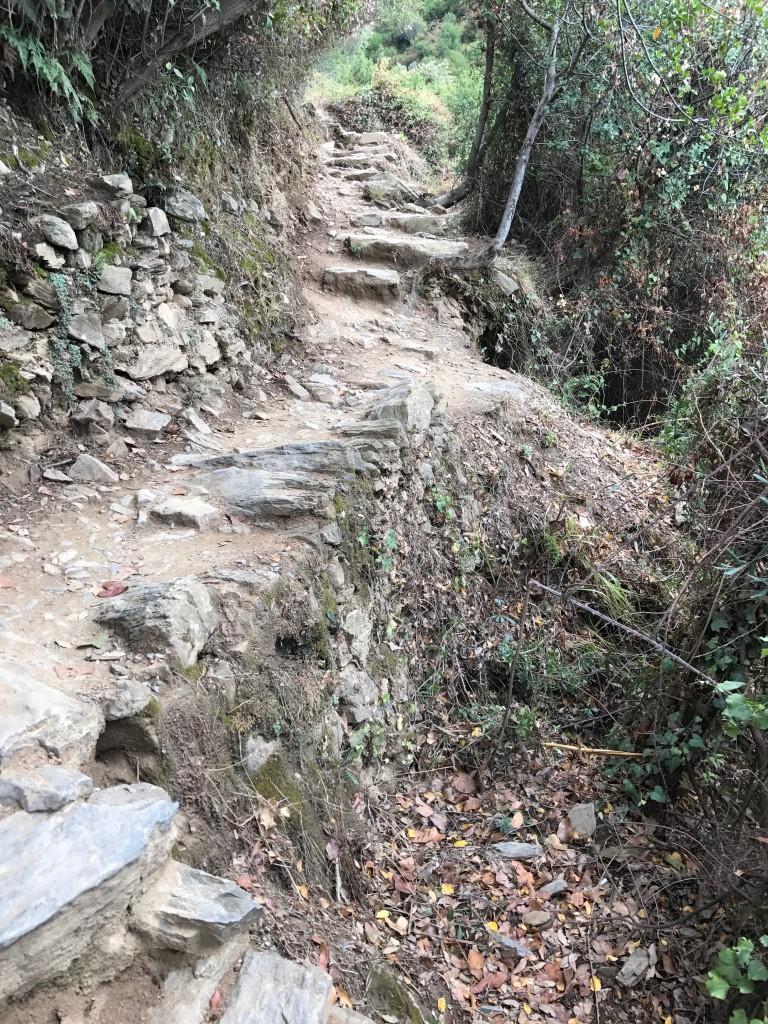 Att gå i flippisar på dessa vandringsleder är naivt och farligt och förstår  att hämta skadade turister som inte vet bättre innebär för kommunen onödiga  ... 4f8380d26f3c9