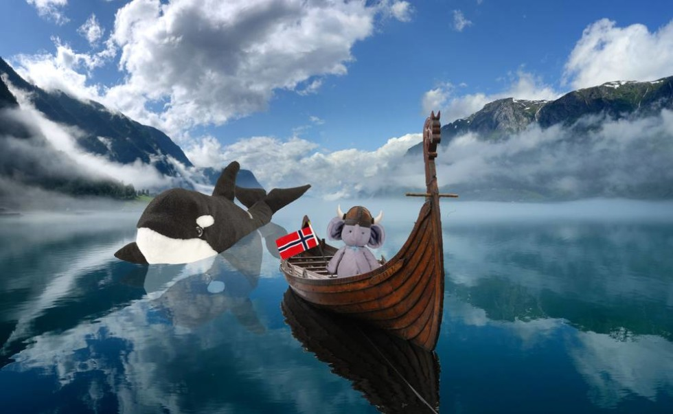 elefante_Norvegia_MGZOOM